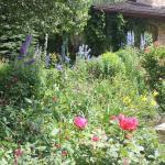 Sawtooth Botanical Garden