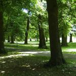 Wandelpark