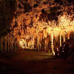 Cuevas Dels Hams