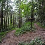 Jackson Chapel Trailhead - Pinhoti Trail
