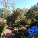 Beech Creek Botanical Garden