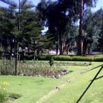Selva Alegre Park