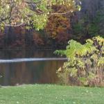Northmoreland Park