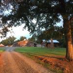 Crosslink Meadows Farm And Ranch