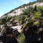 Parco Nazionale Del Circeo (sabaudia)