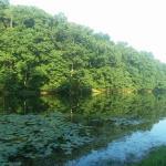 The Hull Plan Lake