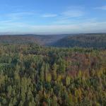 Schoenbuch Nature Park