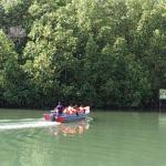 Cherating River