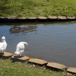 Doornbos Heritage Park