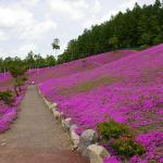 Takinoue Park