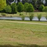 Deibert Park