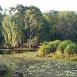 Gold Coast Regional Botanical Gardens