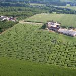 Le Labyrinthe De Lermite