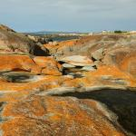 Bay Of Fires Conservation Area