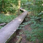 Beargrass Creek State Nature Preserve