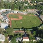 Melaleuca Field