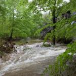 Bell Smith Springs Scenic Area