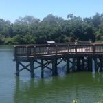 Eagle Lake Park Largo Fl