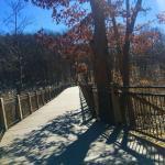 Warren Townsend Park