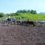 Putnam Horsemanship