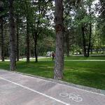Parku Rinia