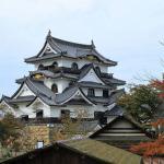 Hikone Castle (hikone)