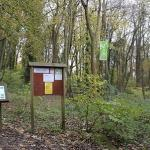 Silver Street Local Nature Reserve