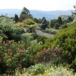 Blue Mountains Botanic Garden
