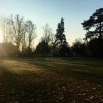 Il Parco Degli Alberi Parlanti